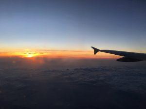 SOLIDスタッフの旅行画像