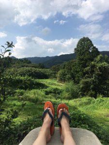 宮崎県の景色