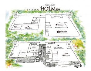 HOLM230